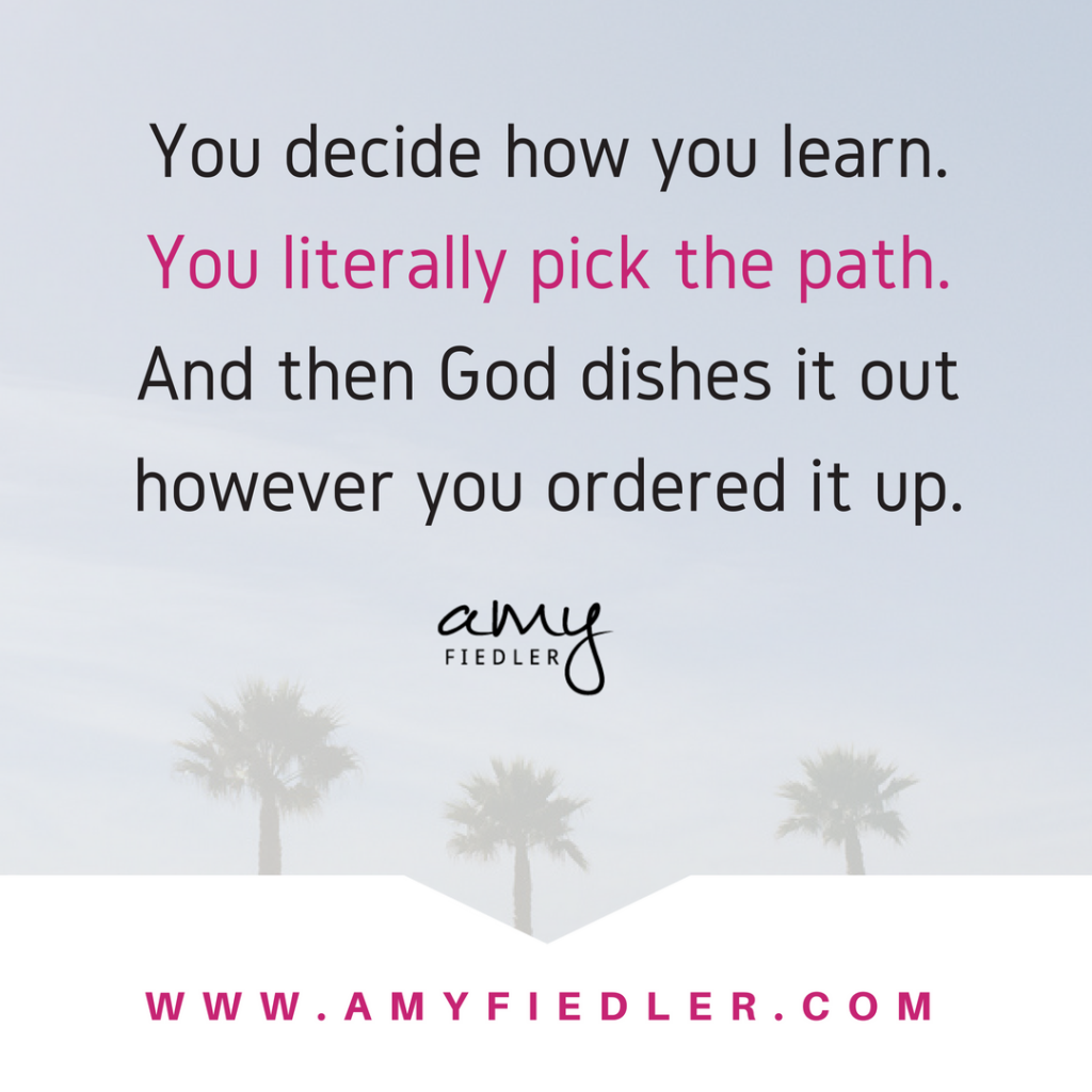 pick your path Amy Fiedler